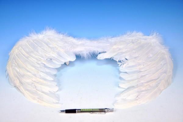 Křídla andělská 50 x 33 cm